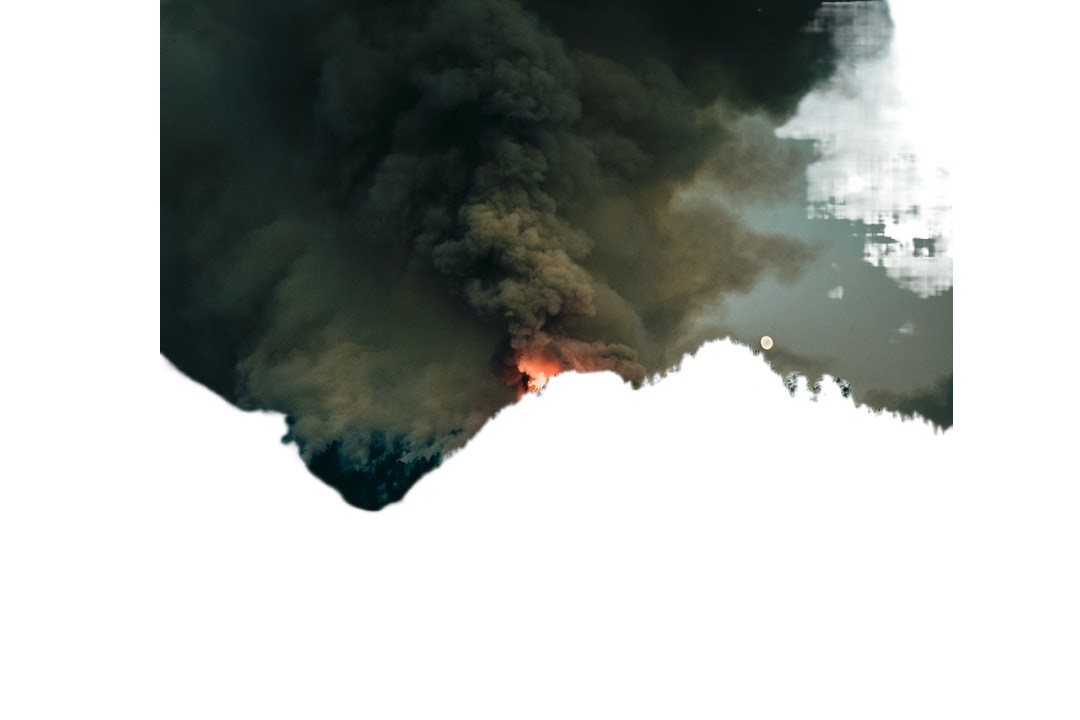 forest fire at daytime